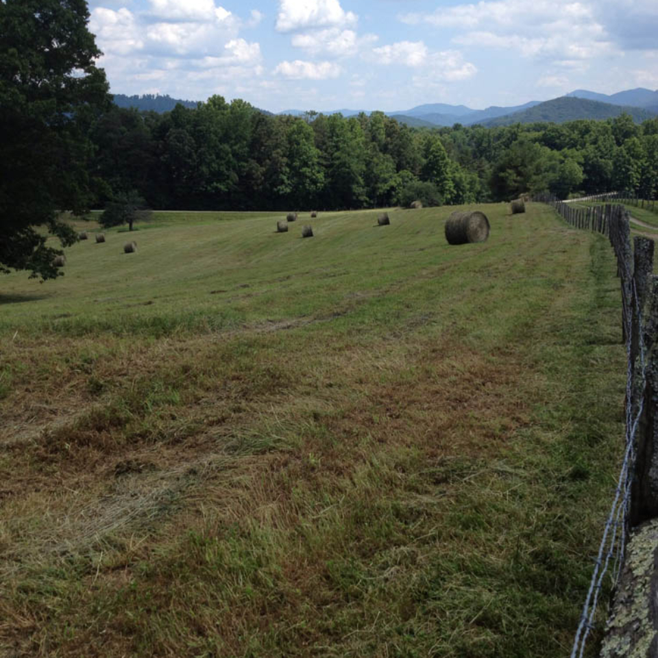 pasture with bales